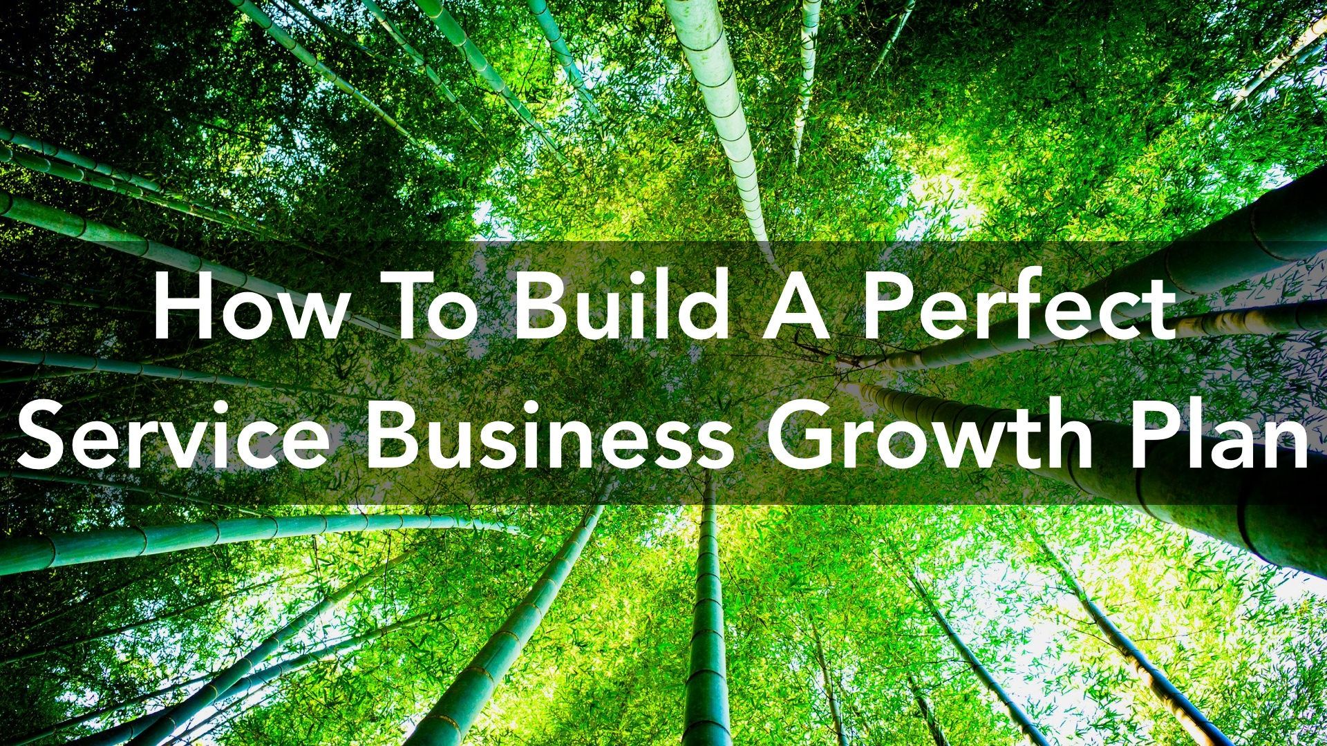 service-business growth plan.001